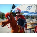 1 мая 2008 г. в городе Чебоксары впервые появился КОНЬ компании «Сириус-Спецодежда».